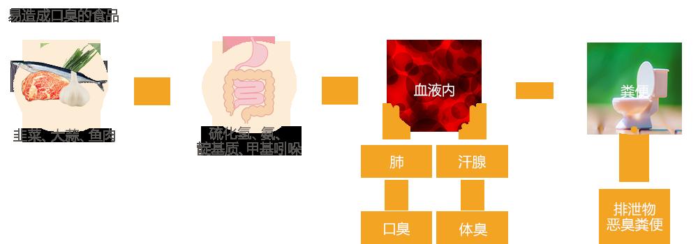 悪臭発生の機序のイメージ