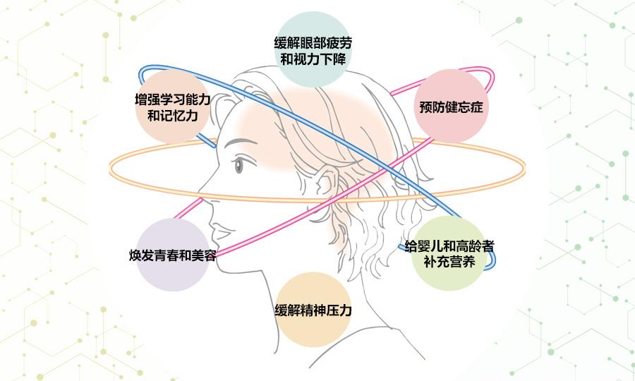 激活的大脑